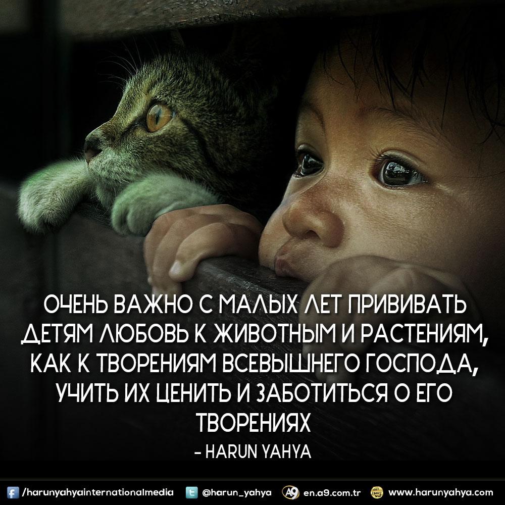 """<table style=""""width: 100%;""""><tr><td style=""""vertical-align: middle;"""">Очень важно с малых лет прививать детям любовь к животным и растениям, как к творениям Всевышнего Господа, учить их ценить и заботиться о Его творениях.</td><td style=""""max-width: 70px;vertical-align: middle;""""> <a href=""""/downloadquote.php?filename=148615332658.jpg""""><img class=""""hoversaturate"""" height=""""20px"""" src=""""/assets/images/download-iconu.png"""" style=""""width: 48px; height: 48px;"""" title=""""Download Image""""/></a></td></tr></table>"""