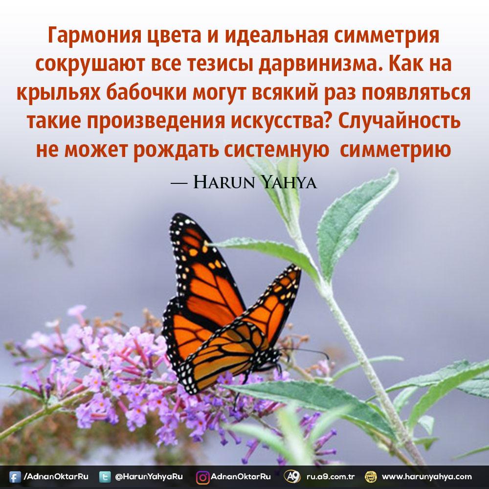 """<table style=""""width: 100%;""""><tr><td style=""""vertical-align: middle;"""">Гармония цвета и идеальная симметрия сокрушают все тезисы дарвинизма. Как на крыльях бабочки могут всякий раз появляться такие произведения искусства? Случайность не может рождать системную  симметрию</td><td style=""""max-width: 70px;vertical-align: middle;""""> <a href=""""/downloadquote.php?filename=149303436830.jpg""""><img class=""""hoversaturate"""" height=""""20px"""" src=""""/assets/images/download-iconu.png"""" style=""""width: 48px; height: 48px;"""" title=""""Download Image""""/></a></td></tr></table>"""